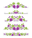 Vector text dividers with bunch of grapes and leaves. On white field Royalty Free Stock Photo