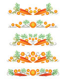 Vector text dividers with carrot and slices in origami style Stock Photo