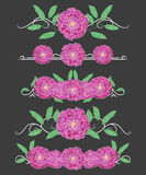 Vector text dividers with green peony leaves and lilac peony Royalty Free Stock Photography