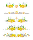 Vector text dividers with lemons and flowers. On white field royalty free illustration