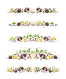 Vector text dividers with mushrooms and parsley. On white field Royalty Free Stock Photo