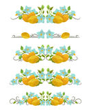 Vector text dividers with potatoes and flowers in origami style Stock Images