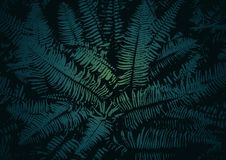 Vector texture of a fern. Abstract dark background with the image of the leaves of the fern Stock Photo