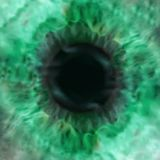 Vector texture of green eye pupil Royalty Free Stock Photos
