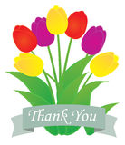 Vector thank you card. Vector illustration of a thank you card with tulips Stock Image