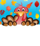 vector thanksgiving day design of turkey Stock Photos