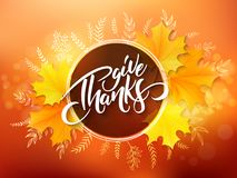 Vector thanksgiving greeting card with hand lettering label - happy thanksgiving day - and autumn doodle leaves and Stock Images