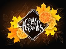 Vector thanksgiving greeting card with hand lettering label - happy thanksgiving day - and autumn doodle leaves Stock Photos