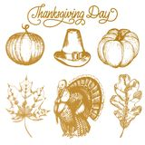 Vector Thanksgiving illustrations for invitations or festive greeting cards. Hand drawn sketches of pumpkin, turkey etc. Vector Thanksgiving illustrations for Stock Image