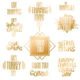 Vector thanksgiving inscription Royalty Free Stock Photo