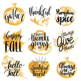 Vector Thanksgiving lettering with illustrations for invitations or festive greeting cards. Handwritten calligraphy set. Vector Thanksgiving lettering with Stock Photos