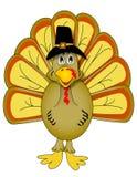 Vector Thanksgiving Turkey. Brown Thanksgiving turkey illustration on white Royalty Free Stock Image