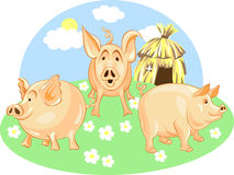 Vector Three little pigs. Three Little Pigs from a green background on a straw house Royalty Free Stock Photos