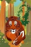 Vector tiger Royalty Free Stock Photos