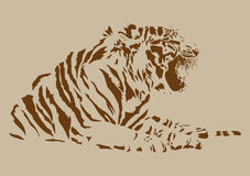 Vector tiger Royalty Free Stock Photos