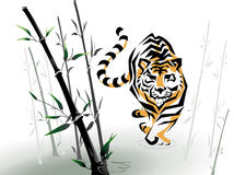 Vector tiger in bamboo Stock Photos