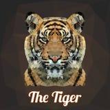 Vector Tiger Head del polígono Foto de archivo libre de regalías