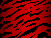 Vector tiger in red Stock Images