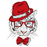Vector tiger wearing glasses and a hat. Hipster. Royalty Free Stock Photo