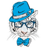 Vector tiger wearing glasses and a hat. Hipster. Stock Image
