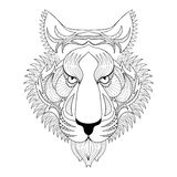 Vector Tiger. Zentangle Tiger face illustration, Tiger head prin Stock Photos