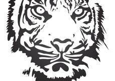 Vector tijger Stock Afbeeldingen