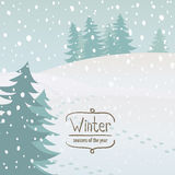 Vector times of year. Vector illustration of the seasons, winter, snow Stock Images