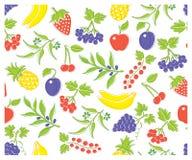 Vector tipos diferentes de frutos e de bagas deliciosos Na cor pura do modo CMYK ilustração do vetor