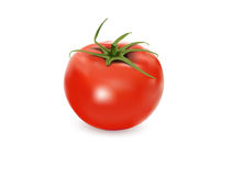 Vector tomato Royalty Free Stock Photography