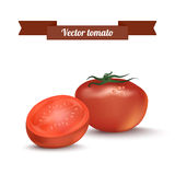Vector tomato Stock Image