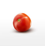 Vector tomato isolated on white background Royalty Free Stock Photos