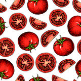 Vector tomato seamless pattern drawing. tomatoes and sliced pieces. Vegetable vector illustration