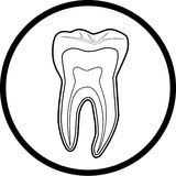 Vector tooth icon Stock Photography