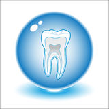 Vector tooth illustration Royalty Free Stock Image