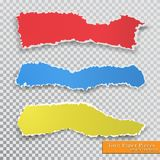 Vector torn paper pieces. Transparent background. Template paper design Stock Photography