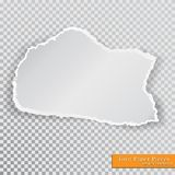 Vector torn paper pieces. Transparent background. Template paper design Stock Photos