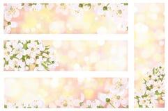 Vector tot bloei komende de lentebanners royalty-vrije illustratie