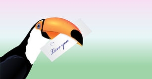 Vector Toucan head with Valentine card. Love you Royalty Free Stock Photos