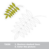Vector trace game. Ash leaf to be traced. Royalty Free Stock Images