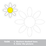 Vector trace game. Camomile to be traced. Stock Image