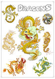 Vector Traditionele Aziatische Draken Stock Foto