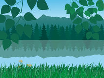 Vector tranquil landscape Stock Images