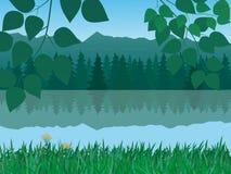 Vector tranquil landscape vector illustration