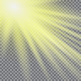 Vector transparent sunlight special lens flare light effect. Sun flash with rays and spotlight Stock Photography