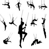 Vector trapeze dancers. High detail vector illustration of trapeze dancers Stock Photos