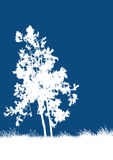 Vector Tree. Vector illustration of a tree Royalty Free Stock Photo