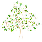 Vector tree 4 color Royalty Free Stock Photo