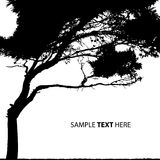 Vector tree. Vector silhouette of a tree Royalty Free Stock Photo