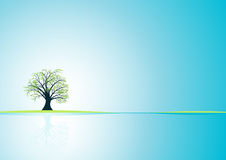 Vector tree design. Beautiful abstract vector tree design Stock Photo