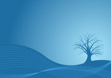 Vector tree design. Beautiful abstract vector tree design Royalty Free Stock Image
